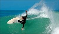 "20 - Cerrai Roberto ""Surf 1"""