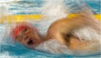 """13 - Sbrana Piero """"Nuoto 16-11"""""""