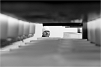 """Brondi Alessio """" Tra tradizione e tecnologia 14 """" (2014)"""
