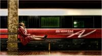 """Bani Angelo """" Firenze Santa Maria Novella 06 """" (2011)"""