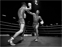 "Bani Angelo ""Real fighters 06"" (2005)"