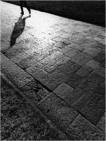 "Barsotti Marco "" Impressioni n° 1 "" (1979)"