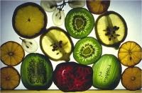"Beconcini Fabio "" Frutta fresca "" (1988)"