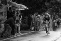 "Bernini Giuseppe ""Giro 2016 13"" (2017)"