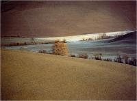 """Calloni Carlo """" Attimi di Toscana 40 """" (2001)"""