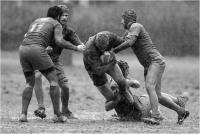 "Cerrai Roberto ""Rugby 5 "" (2018)"