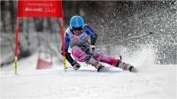 "Cerrai Roberto ""Slalom gigante 13"" (2017)"