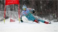 "Cerrai Roberto ""Slalom gigante 15"" (2019)"
