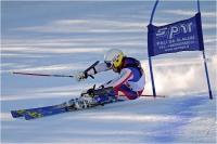 "Cerrai Roberto ""Slalom gigante n°8"" (2015)"
