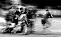 """Filomena Roberto """"Pisa Rugby n° 2"""" (2006)"""