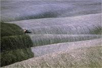 "Gambicorti Mauro "" Paesaggio n° 2 "" (1987)"