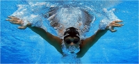 "Giuntoli Andrea "" Nuoto n. 9 "" (2011)"