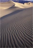 "Goiorani Alberto "" Desert forms "" (1999)"