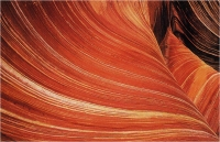 "Goiorani Alberto ""The wave"" (1999)"
