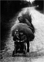 "Maltinti Daniele ""S.T."" (1976)"