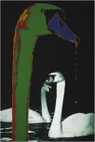 """Menichetti Oreste """"Adler 4"""" (1976)"""