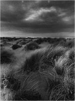"""Menichetti Oreste """" Spiaggia della Normandia """" (1975)"""