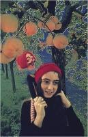 """Menichetti Oreste """" Nel regno di Alice """" (1973)"""
