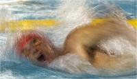 """Sbrana Piero """" Nuoto 16-11 """" (2016)"""
