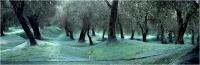 "Sbrana Piero ""Raccolta 1"" (2004)"