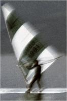 """Sbrana Piero """" Surf """" (1978)"""