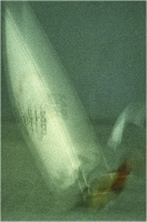 """Sbrana Piero """" Vele sul lago """" (1978)"""