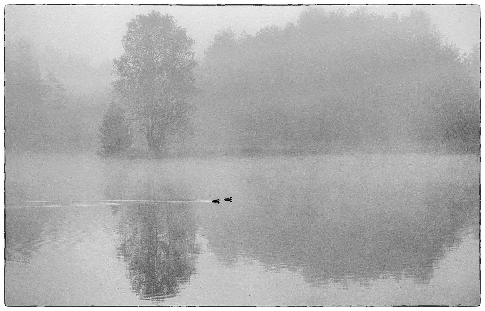 """Marcello Ricci legge """"Lago Chlum"""" di Marcela Lomi"""